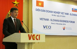 """""""Cán cân thương mại đang nghiêng về phía Việt Nam"""""""