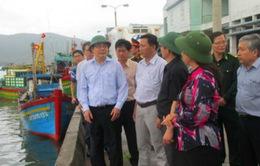 Bộ trưởng Bộ NN&PTNT kiểm tra công  tác ứng phó bão số 4 tại Bình Định