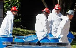 WHO: Số người thiệt mạng do Ebola lên đến 4.500 người
