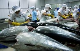 VASEP đề xuất thuế nhập khẩu nguyên liệu cá ngừ còn 0%