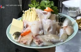 Cá nóc - món ăn độc đáo tại Nhật Bản