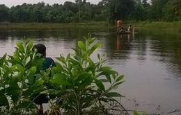Chưa bắt được cá sấu sổng chuồng ở Đồng Nai