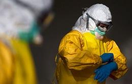 Châu Âu sẽ bị tổn thương nếu coi thường đối phó với Ebola