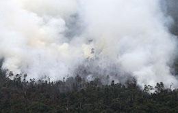 Cháy rừng từ Indonesia gây ô nhiễm không khí ở Singapore