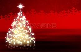 Tự làm cây thông Noel đón Giáng sinh