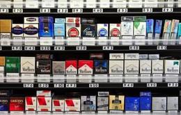 Hơn 1 tỷ gói thuốc lá lậu đã vào Việt Nam trong 8 tháng