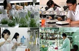 58 lĩnh vực công nghệ cao được ưu tiên đầu tư phát triển