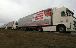 Nga tiếp tục gửi đoàn xe cứu trợ nhân đạo tới Đông Ukraine