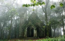 Điều chỉnh diện tích Vườn quốc gia Ba Vì