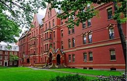 Mỹ: Hàng trăm sinh viên Harvard bị dọa giết