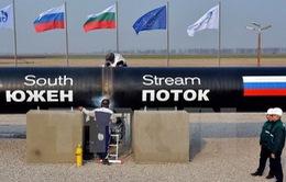 EU tiếp tục thảo luận dự án Dòng chảy phương Nam