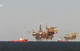 Giá dầu giảm: Tín hiệu vui với kinh tế thế giới