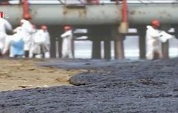 Chile: 3000 lít dầu thô tràn ra biển đe dọa môi trường