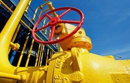 Ukraine thảo luận vấn đề khí đốt với châu Âu