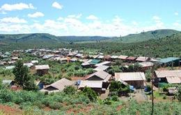 Hội thảo Xử lý khủng hoảng di cư