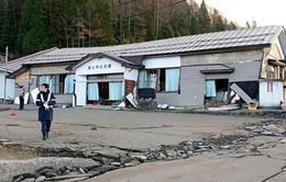 Nhật Bản dốc toàn lực khắc phục hậu quảđộng đất
