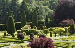 Chiêm ngưỡng vẻ đẹp như mơ của vườn địa đàng Drummond