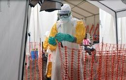 WHO công bố khuyến cáo an toàn trong điều trị Ebola