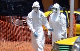 Kinh tế thế giới thiệt hại nặng nề do dịch Ebola