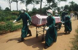 WHO: Sierra Leone vượt Liberia về số ca nhiễm Ebola