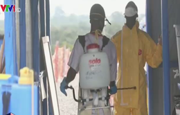 Số ca nhiễm mới Ebola tại Liberia có dấu hiệu giảm