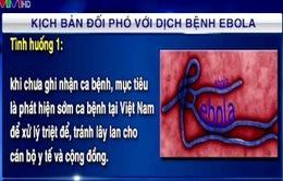 Việt Nam triển khai các biện pháp ứng phó với dịch bệnh Ebola