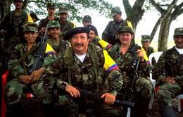 Colombia: FARC tuyên bố trả tự do cho binh sỹ Chính phủ