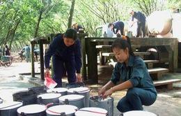 Nguy cơ Ấn Độ kiện Việt Nam bán phá giá cao su