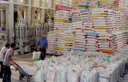Đẩy mạnh xuất khẩu hàng nông sản sang thị trường Nga