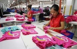 Dệt may Việt Nam sẽ cán mốc xuất khẩu 25 tỷ USD