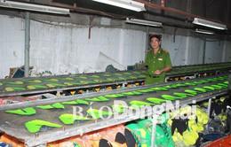 Đồng Nai: Thu giữ 3.000 đôi giày giả các thương hiệu nổi tiếng