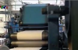 Công ty Mỹ sáng kiến sản xuất giấy từ rơm rạ