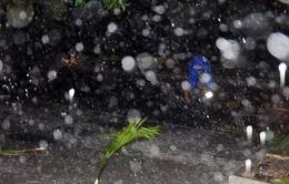 Bão số 4 gây mưa rất to tại Bình Định