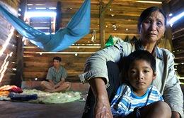 Cuộc sống lay lắt của bé trai 7 tuổi giữa núi rừng Tây Nguyên đại ngàn