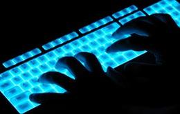 Hơn 50 website của Việt Nam bị tin tặc tấn công