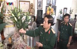 Dâng hương tưởng niệm Đại tướng Lê Trọng Tấn