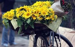 Nâng cao đời sống cho người thu nhập thấp Việt Nam