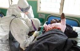 WHO họp tham vấn về biện pháp phòng ngừa, chữa trị Ebola