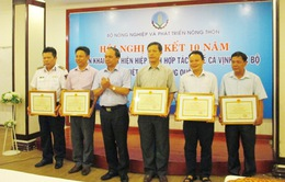 10 năm thực hiện Hiệp định hợp tác nghề cá Vịnh Bắc Bộ Việt Nam - Trung Quốc