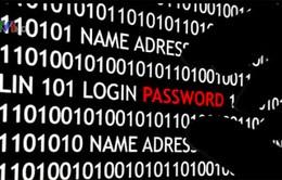 Hàng loạt vụ tin tặc tấn công gây thiệt hại nghiêm trọng
