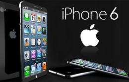 iPhone 6 có nguy cơ trễ hẹn do lỗi màn hình