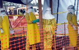 Phòng dịch Ebola khi chuyên chở bệnh nhân bằng đường hàng không