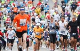 Cuộc thi Marathon quốc tế Đà Nẵng 2014