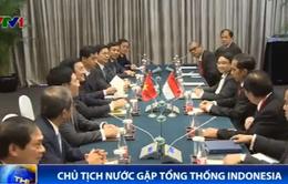 Chủ tịch nước Trương Tấn Sang gặp Tổng thống Indonesia