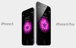 iPhone 6 Plus – Phablet được ưa chuộng nhất