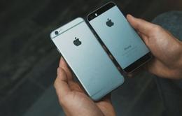 iPhone 6 lộ hình ảnh rõ nét