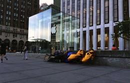 2.500 USD cho 2 vị trí xếp hàng đầu tiên mua iPhone 6