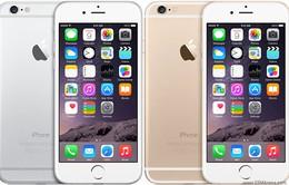 iPhone 6 – Smartphone được tìm kiếm nhiều nhất trên Google