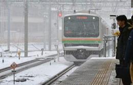 Gió mạnh và tuyết rơi dày tại Nhật Bản