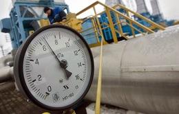 Nga lần đầu tiên giao dịch khí đốt tại sàn St.Petersburg